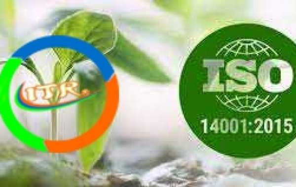 3 key challenges of ISO 14001 implementation in an SME