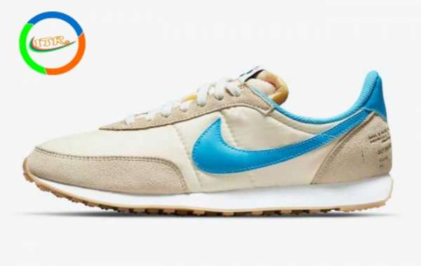 Nike Waffle Trainer 2 Shoe Dog will be released in 2021
